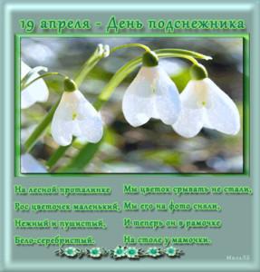 <b>С</b> днем <b>подснежника</b>! 19 апреля. Цветы картинки смайлики
