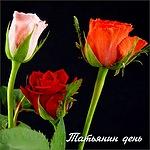 Татьянин день. Розы для Татьяны