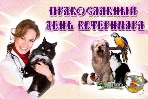 Открытки. Православный день ветеринара! Доктор и животные смайлики картинки