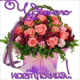 http://liubavyshka.ru/_ph/115/2/272383661.jpg