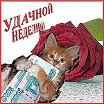 http://liubavyshka.ru/_ph/115/2/965163963.jpg