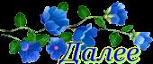 Далее. Надпись. Голубые цветы
