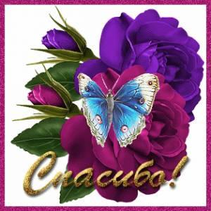 Картинка Цветы с бабочкой. Спасибо! анимация