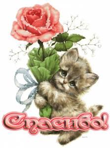 Картинка Роза от котенка с надписью анимация