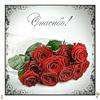 Смайлик Спасибо! Лежат розы красивые. красные аватар