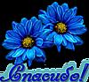 Спасибо! Два синих цветка картинка смайлик