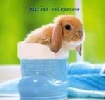 Гиф gif 2011 год-год кролика (в сапожке) рисунок