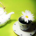 Гиф gif Чайник и кружка с ромашкой рисунок