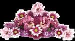 Смайлик Цветочное разнообразие аватар