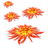Цветы как звезды картинка смайлик