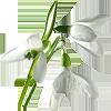 http://liubavyshka.ru/_ph/151/2/418478551.png