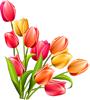http://liubavyshka.ru/_ph/151/2/857813574.png?1519811130