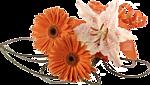 Лилия в сочетании с оранжевыми ромашками