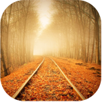 Картинка Осень. Железная дорога в листве анимация
