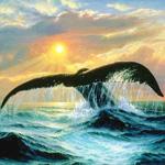 Море картинки