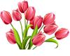 http://liubavyshka.ru/_ph/166/1/939585428.jpg