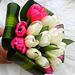Букет из розовых и белых тюльпанов в руке человека