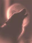 Гиф gif Волк в красных тонах воет на луну рисунок