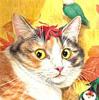 Картинка Удивленный котик анимация