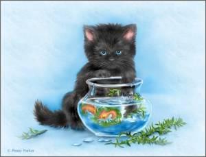 Киса с аквариумом