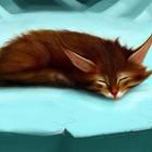 Гиф gif Рыжий котик спит рисунок