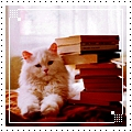 Смайлик Кот и книги аватар