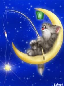 Смайлик Кот=рыбак на луне аватар