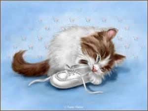 Картинка Бело-коричневый котик анимация