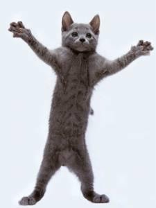 Смайлик Кошка занимается аэробикой аватар