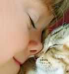 Смайлик Маленькая девочка приложила носик к носику кошки аватар