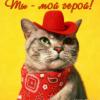 Гиф gif Ты мой герой! Кот в красной шляпе рисунок