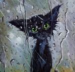 Коты картинки