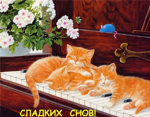 http://liubavyshka.ru/_ph/19/2/628629176.jpg?1413565264