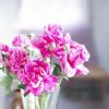 Картинка Букет розовых цветов в вазе анимация
