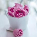 Гиф gif Розовые розы в белой чашке рисунок