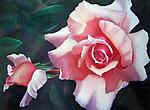 Смайлик Нежная роза  с бутоном аватар