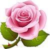 http://liubavyshka.ru/_ph/2/2/187495891.png?1406832662