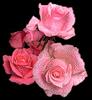 http://liubavyshka.ru/_ph/2/2/222769427.png