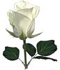 http://liubavyshka.ru/_ph/2/2/228880632.png