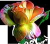 http://liubavyshka.ru/_ph/2/2/351474020.png
