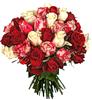 Цветы. Розы. Разные