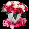 http://liubavyshka.ru/_ph/2/2/55318815.png