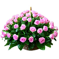 http://liubavyshka.ru/_ph/2/2/58209091.jpg