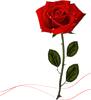http://liubavyshka.ru/_ph/2/2/724269060.png