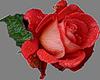 http://liubavyshka.ru/_ph/2/2/846972624.png