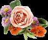 http://liubavyshka.ru/_ph/2/2/914959163.png
