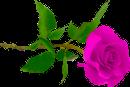 http://liubavyshka.ru/_ph/2/2/916670644.png?1408128634