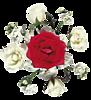 http://liubavyshka.ru/_ph/2/2/978749273.png?1406825690