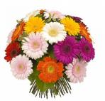 Прекрасные букеты из самых разных цветов (55)
