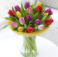 Гиф gif Букет из разноцветных тюльпанов рисунок